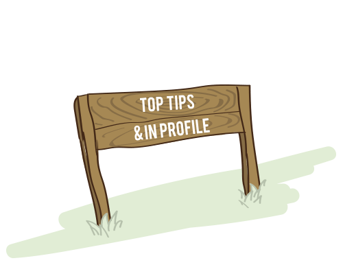 Top-Tips-In-Profile