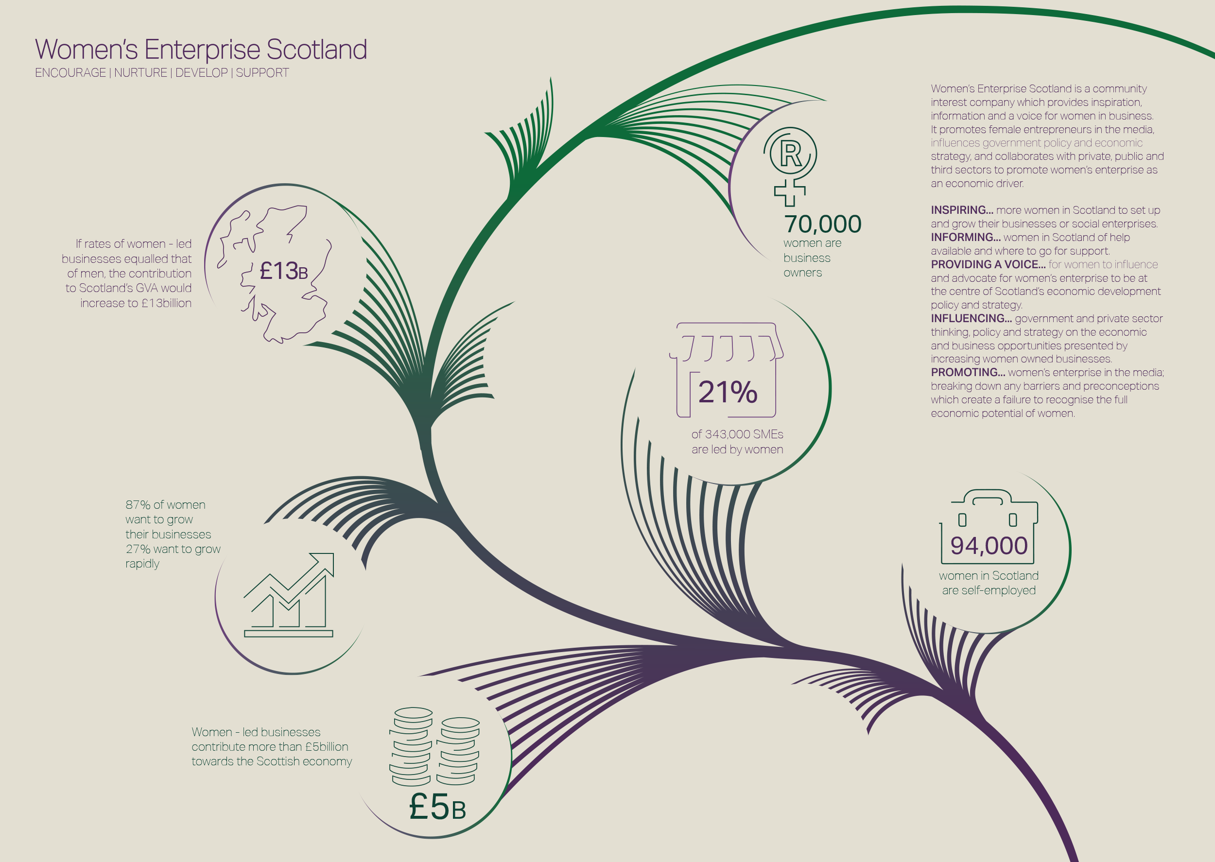 Women's Enterprise Scotland, Infographic Design